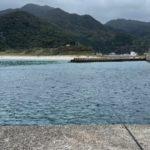 屋久島生活・イカ釣りは難しいけど楽しいです